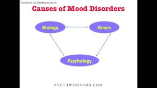 Marwa Azab Ch3 DSM 5 and Major Depressive Disorder