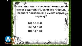 Предметный тест. Биология. Общая информация.