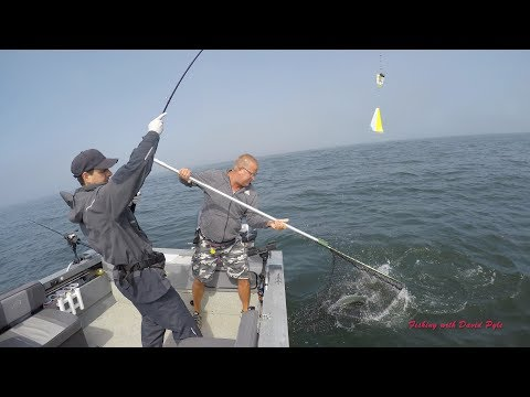 Ocean Salmon Fishing Near The Mouth Of The Columbia River - Fishing With David Pyle