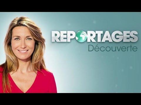 Extrait Reportages Découverte TF1 26/02/2017