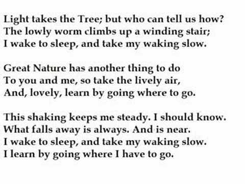 roethke the waking