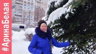 ГОТОВЛЮ ОБЕД И ТОРТ К ДНЮ РОЖДЕНИЯ | Arina Belaja