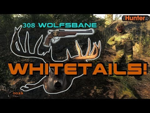 Bringing Back The MOST REALISTIC Hunting Game!! (Wall Hangers)  THEHUNTER 2018