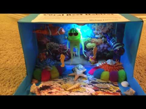 Shoebox Habitat : Coral Reef