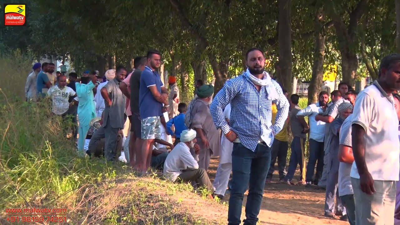 MANKAN (Kapurthala) ! OX RACES - 2015 ! ਮਾਣਕਾਂ (ਕਪੂਰਥਲਾ) - ਬਲਦਾਂ ਦੀਆਂ ਦੌੜਾਂ ! Full HD ! Part 2nd.