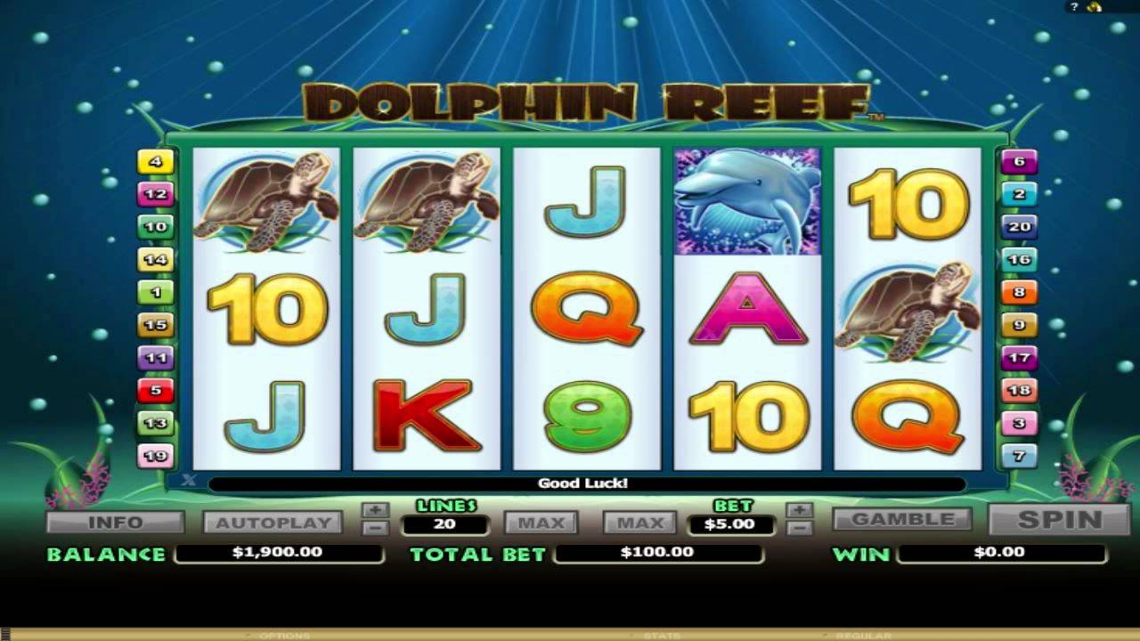 Dolphin Reef™ Slot Machine Game to Play Free in NextGen Gamings Online Casinos