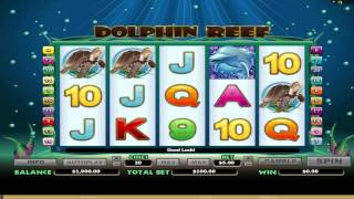 FREE Dolphin Reef ™ slot machine game preview by Slotozilla.com(Play Dolphin Reef ™ slots online for free at Slotozilla.com: http://www.slotozilla.com/free-slots/dolphin-reef . Full list of free slot games you can find here: ..., 2013-08-12T13:07:53.000Z)