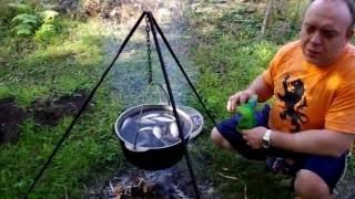Уха рыбацкая (походная) / Ear fishing (hiking)