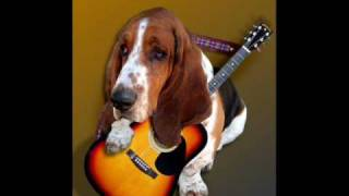 Play Go Away Hound Dog