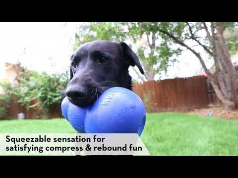 kong-bounzer-ultra---dog-toy