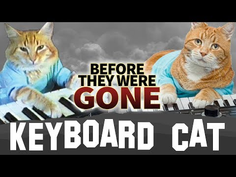 KEYBOARD CAT  Before They Were GONE  #RIP
