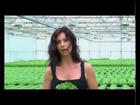 Kräutergut Dworschak-Fleischmann: Träger des Förderpreises Ökologischer Landbau 2011