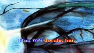 Mircea Rusu - Omul bun si pomul copt - karaoke romanesti