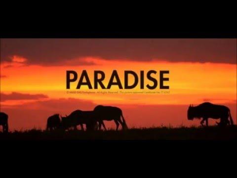 Paradise   Coldplay Instrumental  karaoke