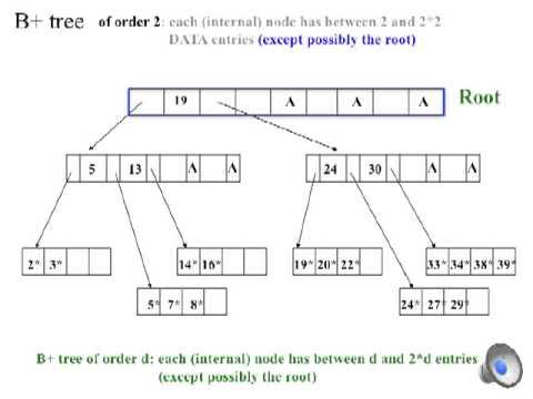 B+ Tree Basics 1