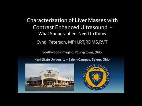 SonoWorld: Characterization of Liver Mases with Contrast Enhanced Ultrasound