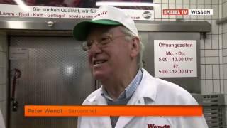 Snack & Schnack zum Morgengrauen Die Hamburger Kultkneipe Erikas Eck Doku über Erikas Eck Teil 1