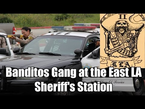 Download Banditos Gang at the Los Angeles Sheriff's Department