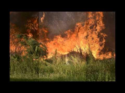 Photos of fire at Lake Casa Blanca