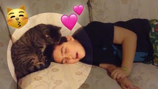 Kitty Kisses His Human Good Morning 😍  | Funny Animal Compilation