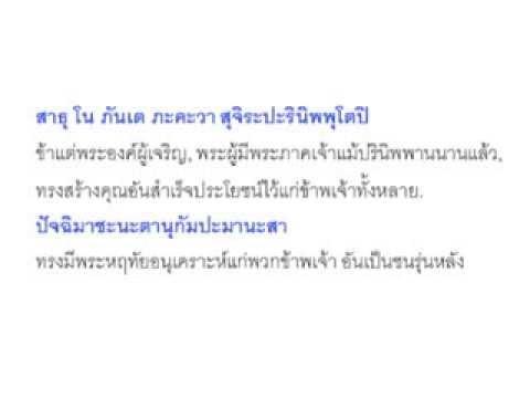 ทำวัตรเช้าแปล (วัดหนองป่าพง)