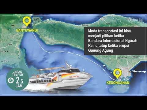 motion graphic : fast boat marina srikandi (bali - banyuwangi)