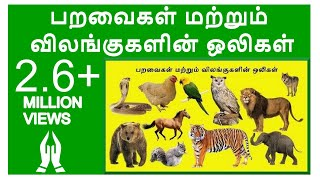 Learn Birds and Animals Sound in Tamil for Children