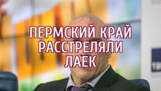Валуев дал оценку экс-чиновнику, расстрелявшему собак в Прикамье