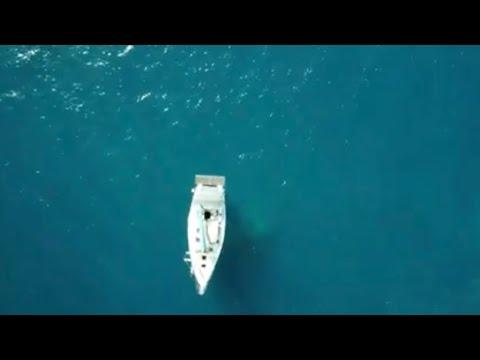 Aqua SUSHI GEL PILLOW 15.9/'/' BY 10/'/'