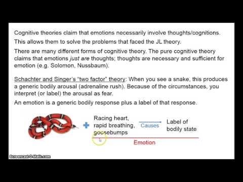 Philosophy of Emotion 2 - Cognitive Theories