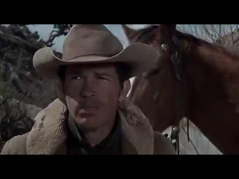 Кадры из фильма Перестрелка