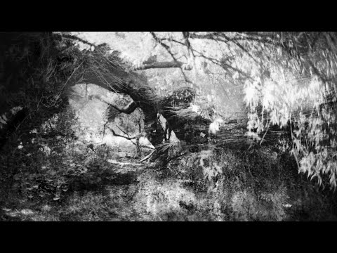 B-Format - Acid Soul (Hector Da Rosa Remix)