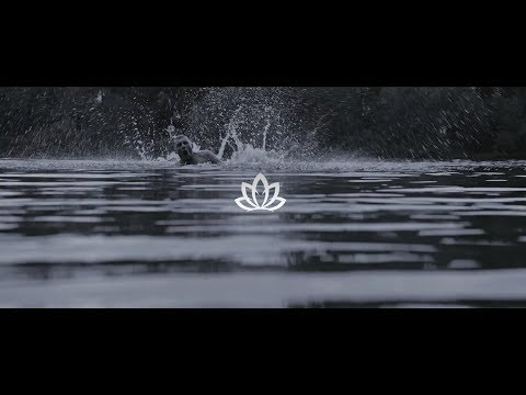 RICHTER x LOTUS (prod. by Johnny Illstrument & Toxik Tyson)