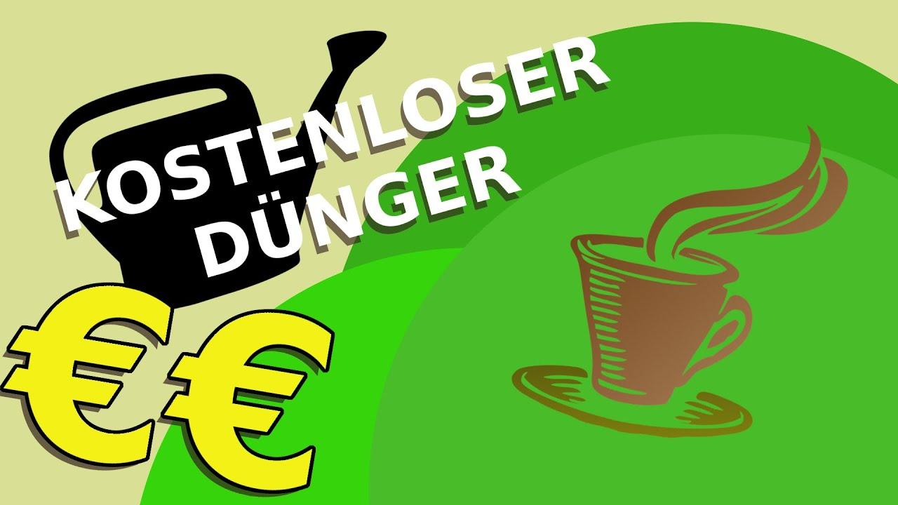 Kurz mal nachgedacht  Kostenloser Dünger Kaffeesatz [Deutsch] YouTube ~ 06015336_Kaffeesatz Dünger Sukkulenten