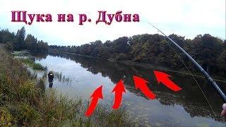 Ловля щуки на спиннинг на реке Дубна