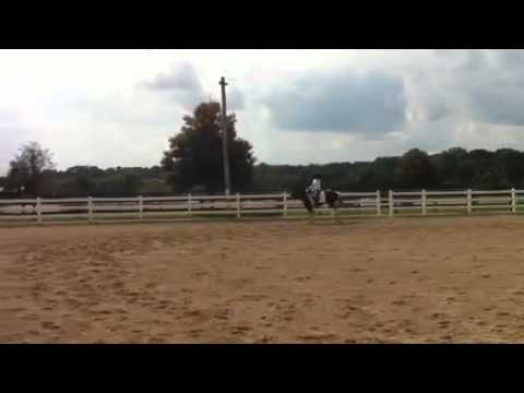 Chris Silverwood Schooling Show CT August 2011