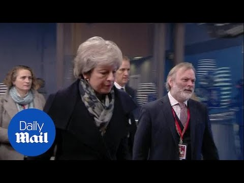Theresa May throws the kitchen sink at Brexit