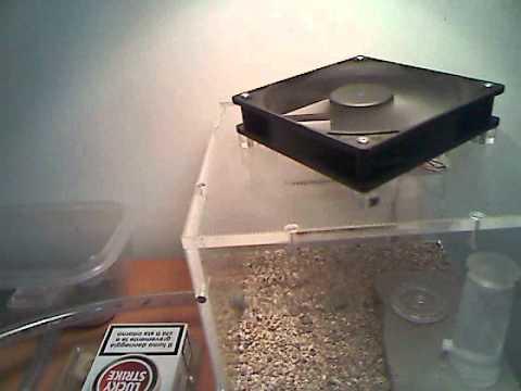 Ventilazione youtube - Ventilazione forzata bagno ...