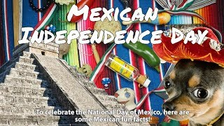 September 16th: Mexican Independence Day