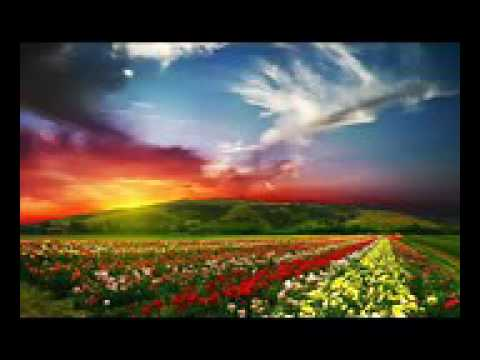 Tere Mere Bas Mai Kya Hai Full Song Damit