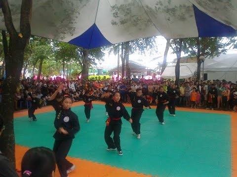 Vietnamese Martial Art Show 2014