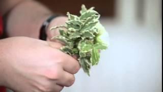 Мастер класс флориста  цветочный браслет для подружки невесты