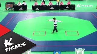 자유품새1위 K타이거즈 한영훈 Free style poomsae 1st place  K-Tigers Han Young-hun
