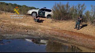 La Guardia Civil investiga a 7 personas vinculadas al Espacio Natural de Doñana