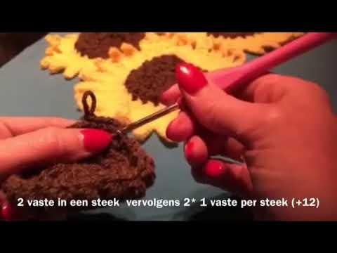 Zonnebloemen Haken Voor De Zonnebloem Youtube