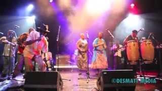 THOMAS MAPFUMO-CHAMUNORWA ORIGINAL LIVE 2013- WASHINGTON KAVHAI