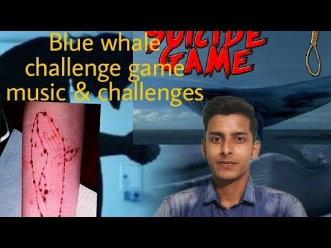 Music & All 50 Challenge of Blue Whale Game....