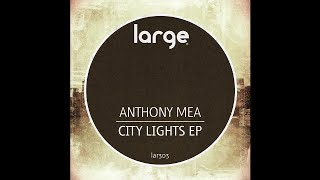Anthony Mea | City Lights