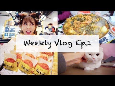 Weekly Vlog Ep. 1   韓國美容院, 馬鈴薯排骨湯, 賣場超市, 大田地鐵市區, 大田名店聖心堂, 智齒拆線   OopsAnnieNini