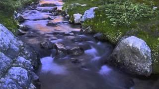Charles Gounod-Requiem-Michel Corboz